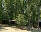 高官庄镇永合庄村 土地 1000平米