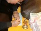 古董古玩免费评估鉴定拍卖征集全国收购