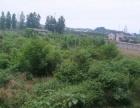 宜昌市夷陵区龙泉镇钟家饭 土地 13320平米
