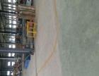 罗亭工业园 厂房 10000平米