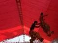 梅州专业舞狮表演团队