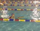 教游泳,一对一培训