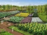 景观设计-规划室外景观庭院绿化商场酒店室内绿化免费设计