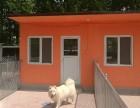 潘家园猫狗寄养 春节寄养预订中可接送单间寄养入住散养