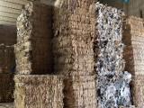 廣州上門回收工廠公司事業單位廢紙,廢書本紙,廢紙槳廢紙箱