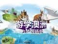 澳大利亚游学,世纪桥冬令营,国际游学