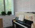 学习钢琴好年龄 学钢琴的好处咨询张老师