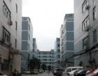 石岩物流园附近1楼1300平6米高标准厂房出租