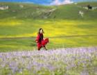 大美新疆 6 7 8 9月新疆伊犁包车 自驾 伊犁环线