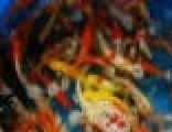 河北故城如意鱼苗场出售各种淡水鱼苗,批发锦鲤和红鲫鱼。
