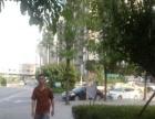 (个人)渝北 正公交车站旁面馆急转 拒绝亏本转让!