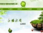揭阳网站建设服务,程序开发,系统开发,微商城开发