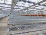温室苗床网专业生产厂家,安平华首丝网制品有限公司