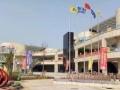 蔡甸人民国际汽车城,公寓商铺出售,地边建筑 升值空间巨大