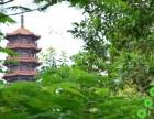 爆炸性新闻:深圳公明下辇村 红花公馆 出大事了??红花公馆