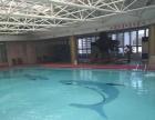 石家庄游泳私教团队,初学者***选择,不限课时,包会