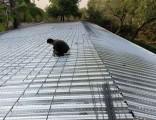 海淀区彩钢板房活动房搭建安装公司