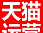 天猫运营/推广 淘宝SEO优化 视觉营销 免费试用