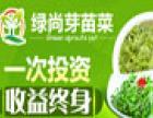 绿尚芽苗菜加盟