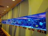 无锡定制大型鱼缸私人鱼缸定制别墅鱼缸量身设计