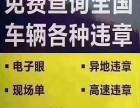 上海博盛办理车辆违章及全国车辆违章审证换证