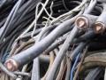 世纪电缆电线回收 诚实守信 服务周到