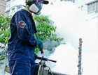 南京神捕专业灭四害,全区上门服务,定期维护,彻底清除
