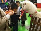 上海杨浦区草泥马租赁-神兽出租-羊驼租赁-展览展示庆典