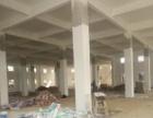 独门独院标准厂房一楼厂房2800平方对外招租
