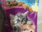 维嘉猫粮,低价出售