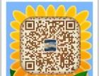 郑州软件专业系统开发