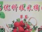 名优科技奶油草莓采摘园