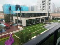 新力东园 怎么样?离惠州南站有多远特价房新力东园