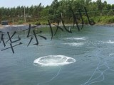 郑州水产养殖增氧机 价格增氧泵 增氧鼓风机配件价格表
