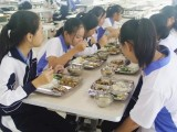 深圳寄宿小学 深圳寄宿学校 2020年入校条件和