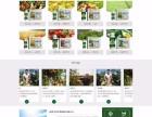郑州网站建设推广,微信三级分销开发