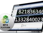 绿色版MT4软件出租出售