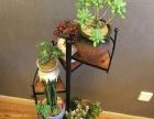 欧美式铁艺多肉花架 复古实木落加盟 灯具灯饰