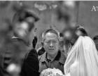 婚礼摄影—杨树老师