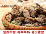 湛江特产蚝豉 海蛎干海蛎子 生蚝干 牡蛎干 特级海产品干货年货