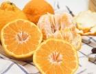 颐和果园水果市场和集鲜生哪个有优势