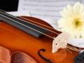 找小提琴爱好者一起练琴