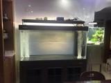上海鱼缸定制,上海鱼缸专卖