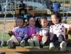七彩日升农场国庆苹果采摘节特惠活动上线了