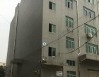 *急租* 新塘荔新大道边550平米精装厂房