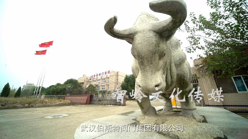 武汉影视广告公司