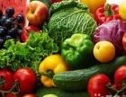 蔬菜、水果、肉类配送、鱼类、专业食材配送