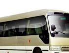 来电预约优惠,我们承接8座-55座旅游包车