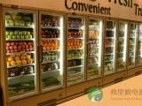弗里欧立式冰柜的产品特点