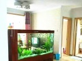 屏风隔断鱼缸鑫德龙 屏族箱 免换水生态鱼缸